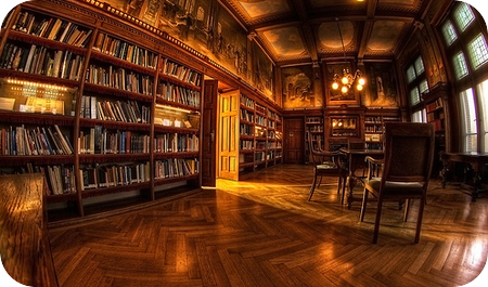 the_old_library_by_erik